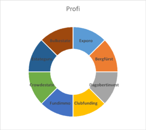 profi portfolio aufteilung